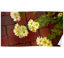 Flowers and Brick Poster