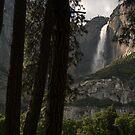 Yosemite Falls by CherylBee