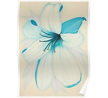 Lilipol Bright Turquoise Blue Lily Flower Painting Poster