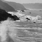 Crashing Waves by CherylBee