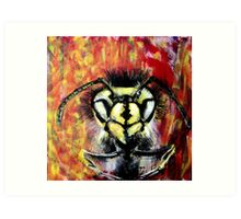 European wasp thriving in the Australian warmth. Art Print