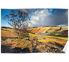 Watendlath View - Cumbria Poster