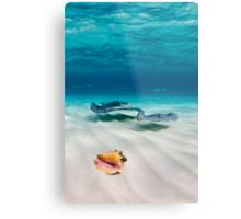 Two stingrays & a shell went into a sandbar... Metal Print