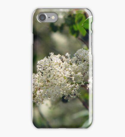 Deer Brush iPhone Case/Skin
