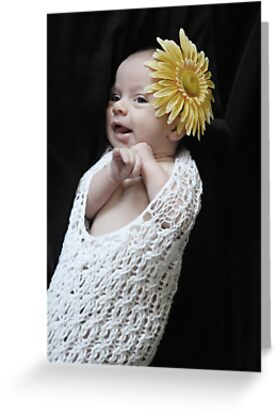 Flower Baby by Dawn Palmerley