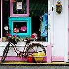 Bicycle by Antique Shop by Susan Savad