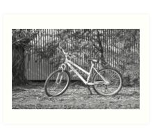 Ladies Mountain Bike... Art Print