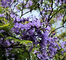 Bloom in STYLE by Joy Watson