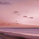 Pink Dawn by designingjudy