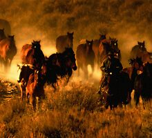 The cowboy way of life by Jeanne  Nations