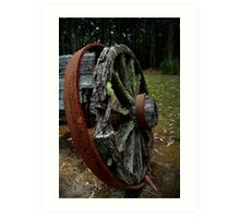 Mossy Wagon Wheel,Otway Ranges Art Print