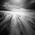 Riversdale #5 by Steve Allsopp
