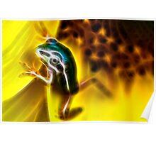 FrogArt Poster