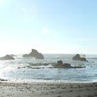 It's the rocks - Shell Beach by smerlau