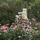 Birdhouse floating on sea of roses by BronReid