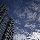 a tall, floury sky by theblackazar