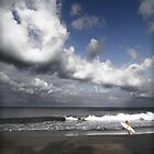the surfers satisfaction by wellman