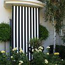 French courtyard garden, North Adelaide by BronReid