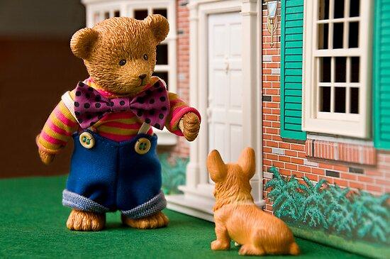 Bear's best friend by Colleen Sattler