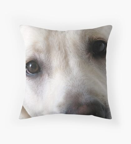 The Eyes Have It  Throw Pillow