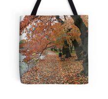 Fall - Washington DC Lake Tote Bag