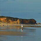 Split Point Lighthouse, Victoria, Australia by Sharon McDowall