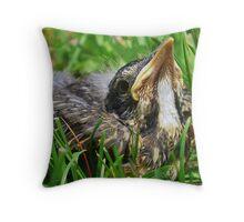 Little Robin Throw Pillow