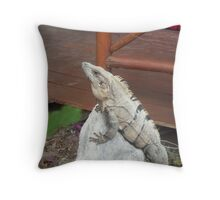 Iguana on rock in Playa del Carmen, Mexico Throw Pillow