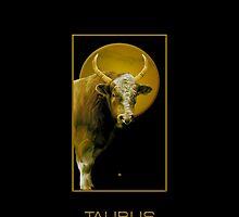 The Taurus Zodiac Emblem by Vy Solomatenko