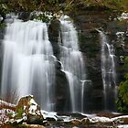 MEIGS FALLS,WINTER by Chuck Wickham
