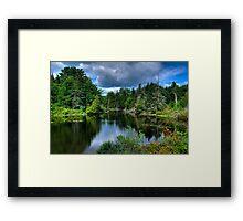 Maine - Lake  Framed Print