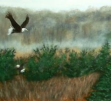 Prarie du sac eagle by Dan Wagner