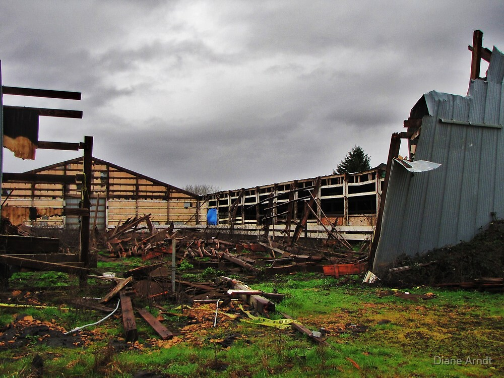 Due To Heavy Snows....Salem, Oregon by Diane Arndt