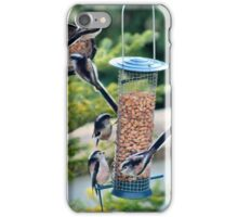A quintet of long tails iPhone Case/Skin