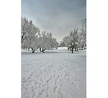 Gloom Winter Photographic Print