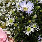 Beauty in flowers.. by supernan
