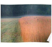 Autumn Wheat Poster