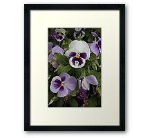 You Can - Collaboration with Photography by Paloma Framed Print