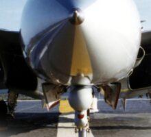 F14 TomCat T Sticker