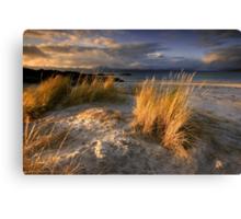Scotland : Ben's Beach Canvas Print