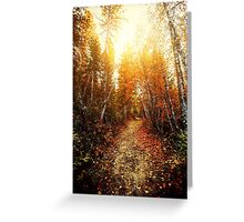 Red Forest, Washington in November Greeting Card