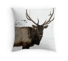 Bull Elk  Throw Pillow