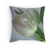 ~ Shining Lady ~ Throw Pillow