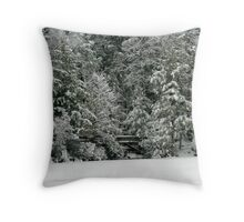 The Bridge at Fahnestock State Park Throw Pillow