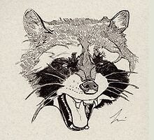 Rockin' Raccoon by RedMedKit