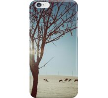 Tree and Cows iPhone Case/Skin