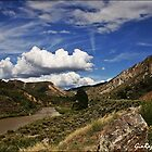 Rio Grande New Mexico by Ginger