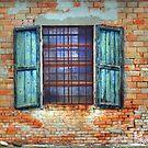 Window 1 by marcopuch