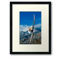 Crosswind Framed Print