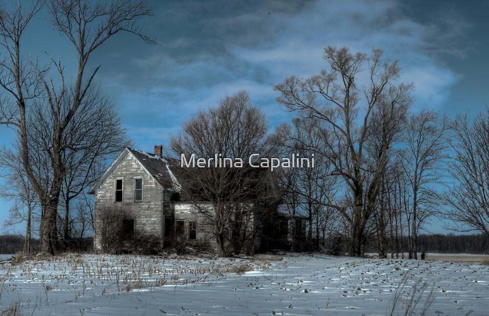 Abandoned by Merlina Capalini